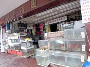 いけす - 竹園海鮮飯店・九龍城