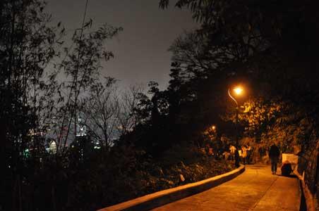 舊山頂道 - 舊山頂道(オールド・ピーク・ロード)